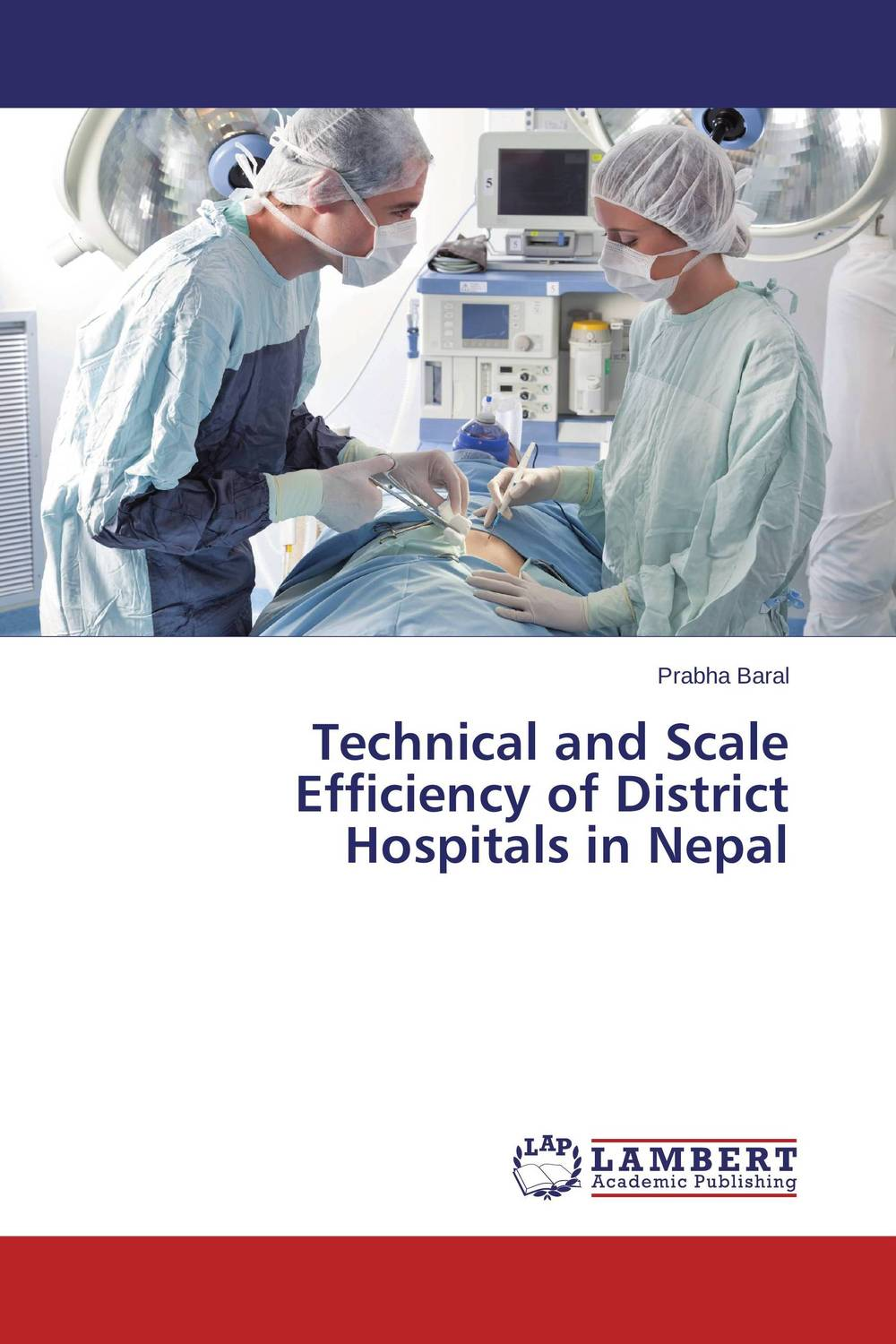 Technical and Scale Efficiency of District Hospitals in Nepal technical efficiency of greenhouse rose cut flower farms