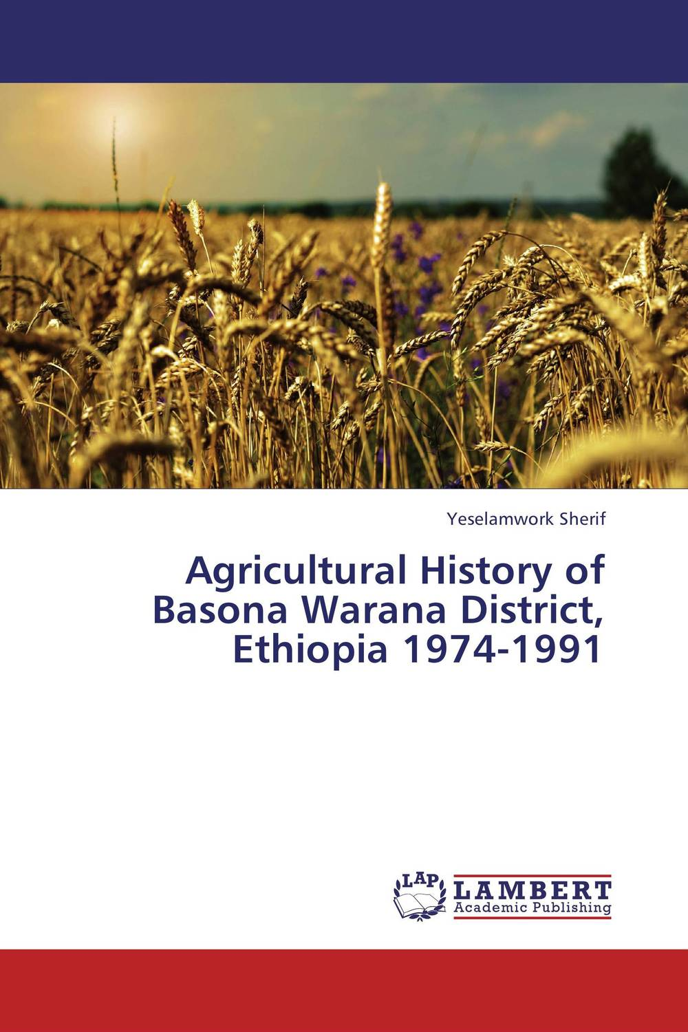 Agricultural History of Basona Warana District, Ethiopia 1974-1991 cervical cancer in amhara region in ethiopia