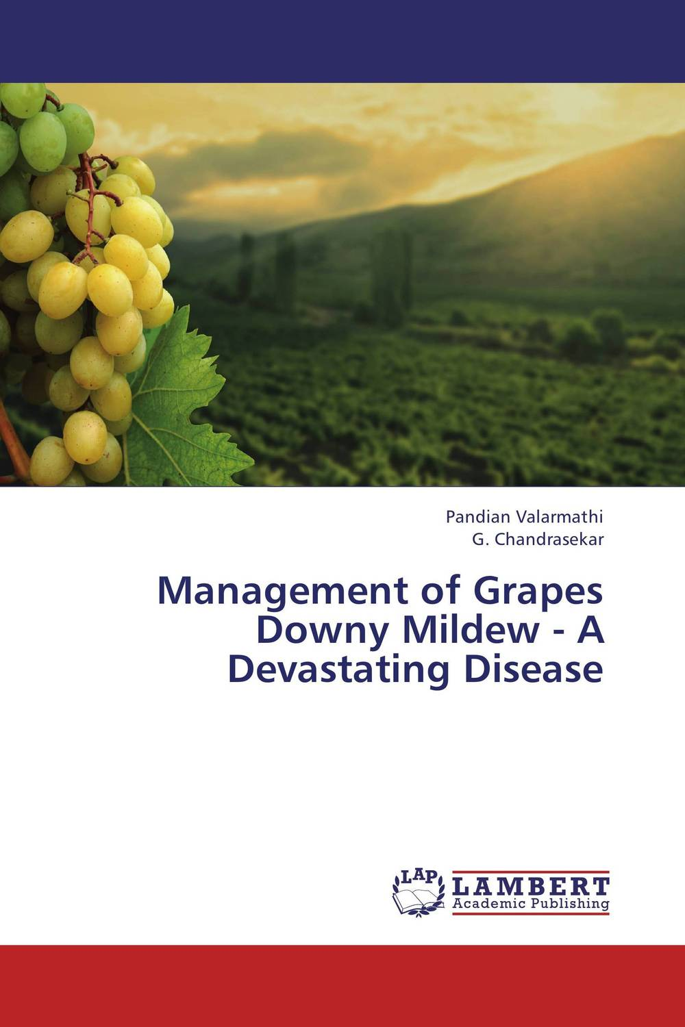 Zakazat.ru Management of Grapes Downy Mildew - A Devastating Disease
