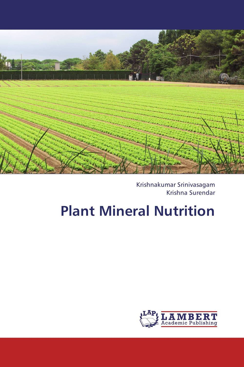 Plant Mineral Nutrition development of a computational interface for small hydropower plant