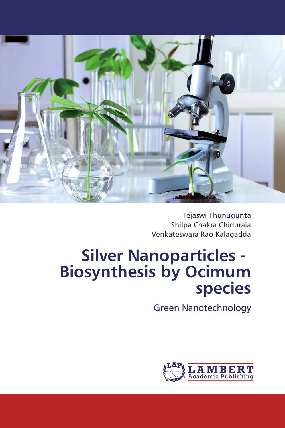 Silver Nanoparticles - Biosynthesis by Ocimum species the silver chair