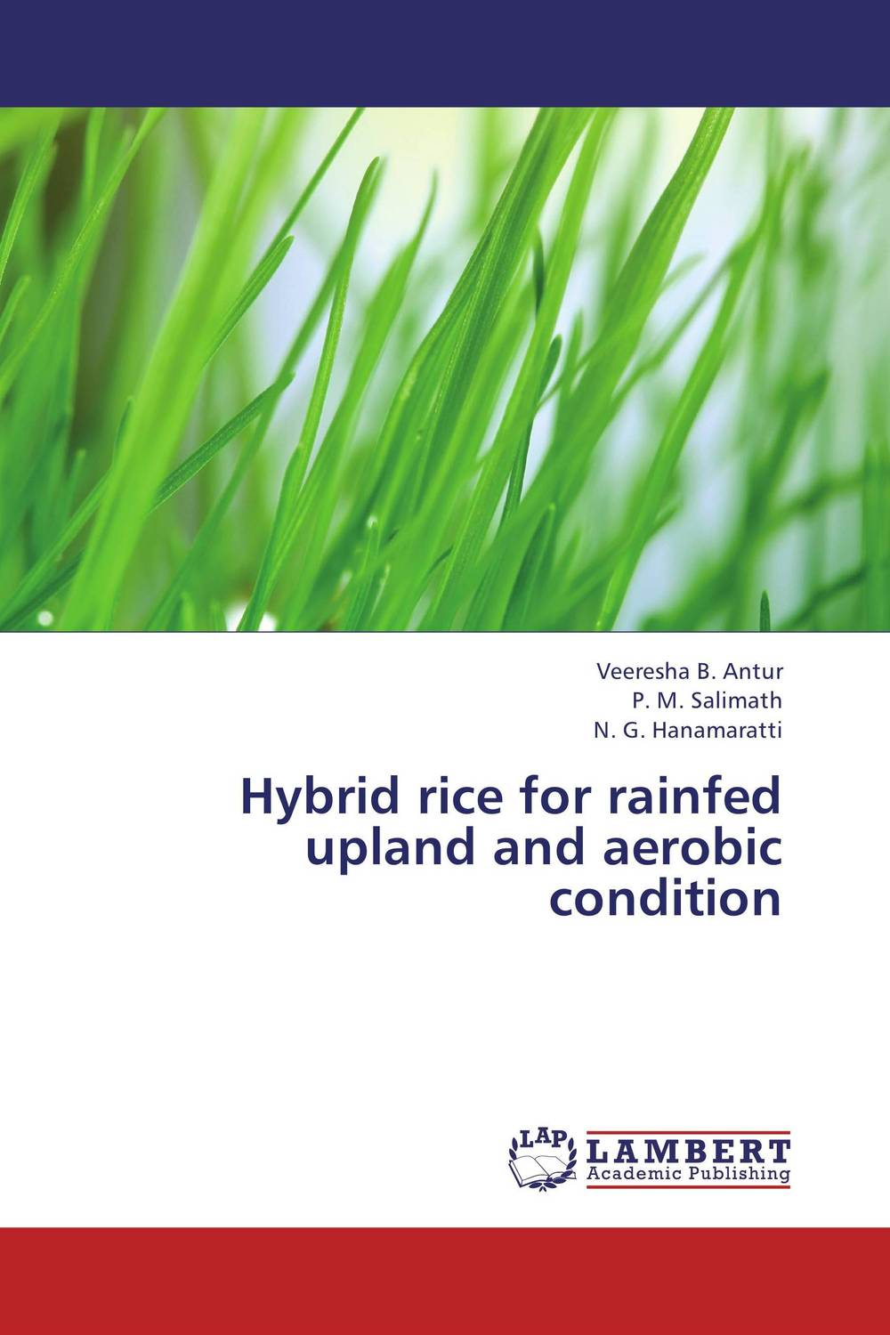 Hybrid rice for rainfed upland and aerobic condition dali epicon 8 white gloss