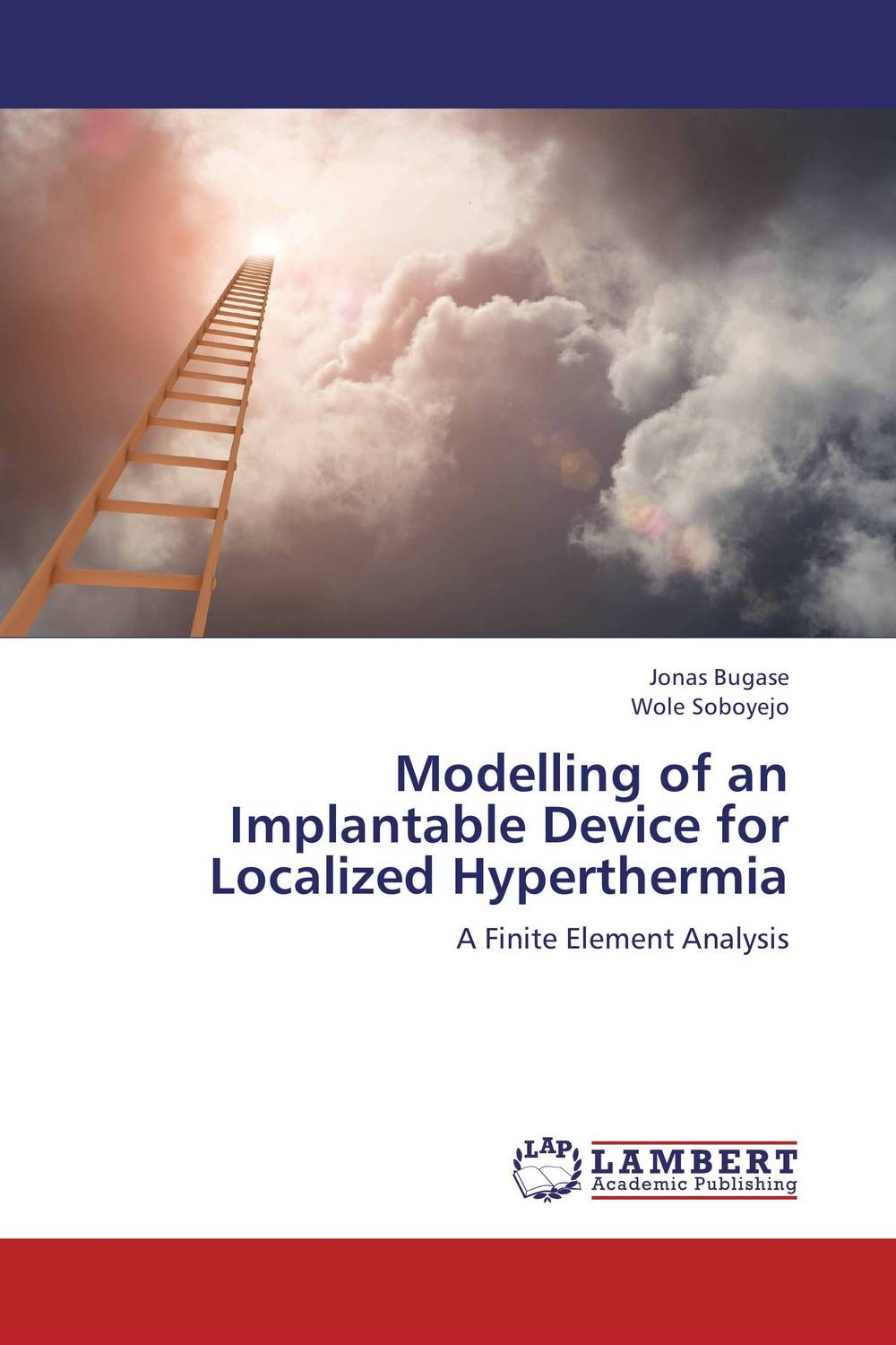 Modelling of an Implantable Device for Localized Hyperthermia cross learning the art of mathematical modelling