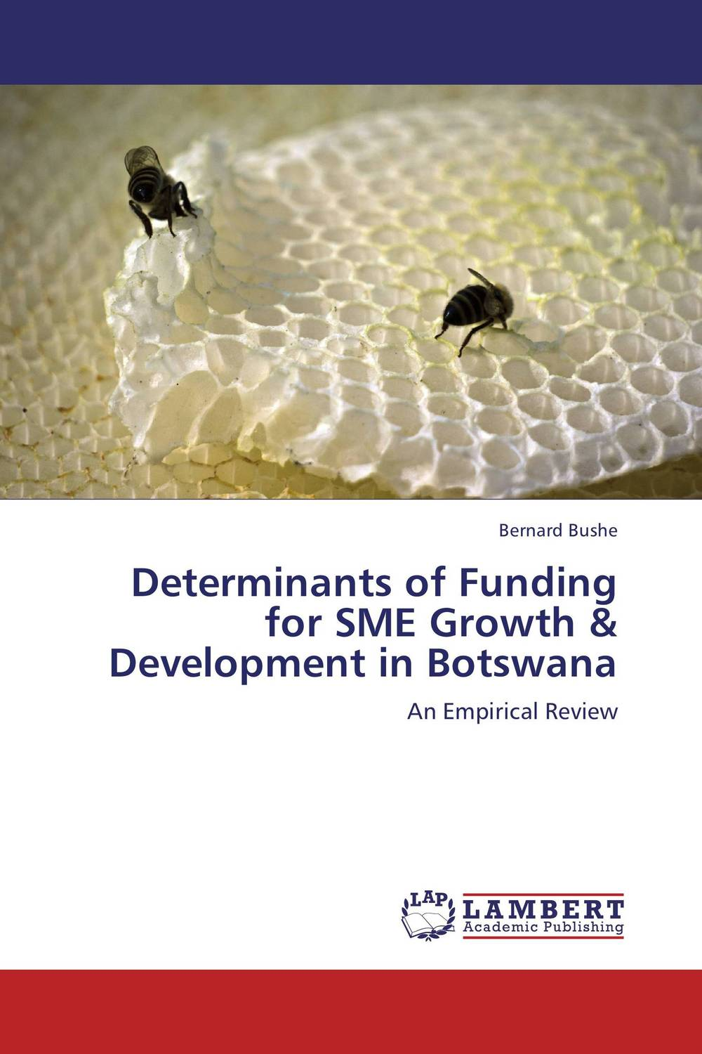 Determinants of Funding for SME Growth & Development in Botswana rakesh kumar emerging role of civil society in development of botswana