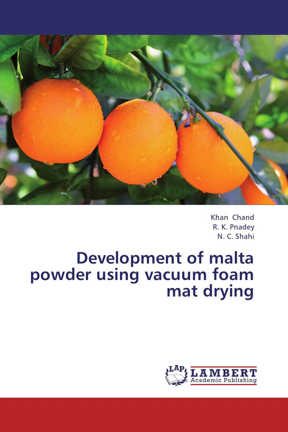 Development of malta powder using vacuum foam mat drying evaluation of aqueous solubility of hydroxamic acids by pls modelling