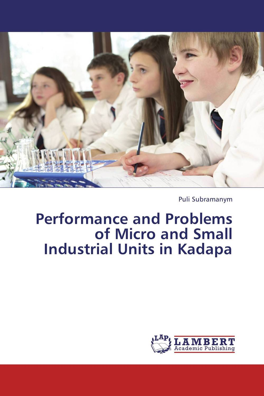 Performance and Problems of Micro and Small Industrial Units in Kadapa jaynal ud din ahmed and mohd abdul rashid institutional finance for micro and small entreprises in india