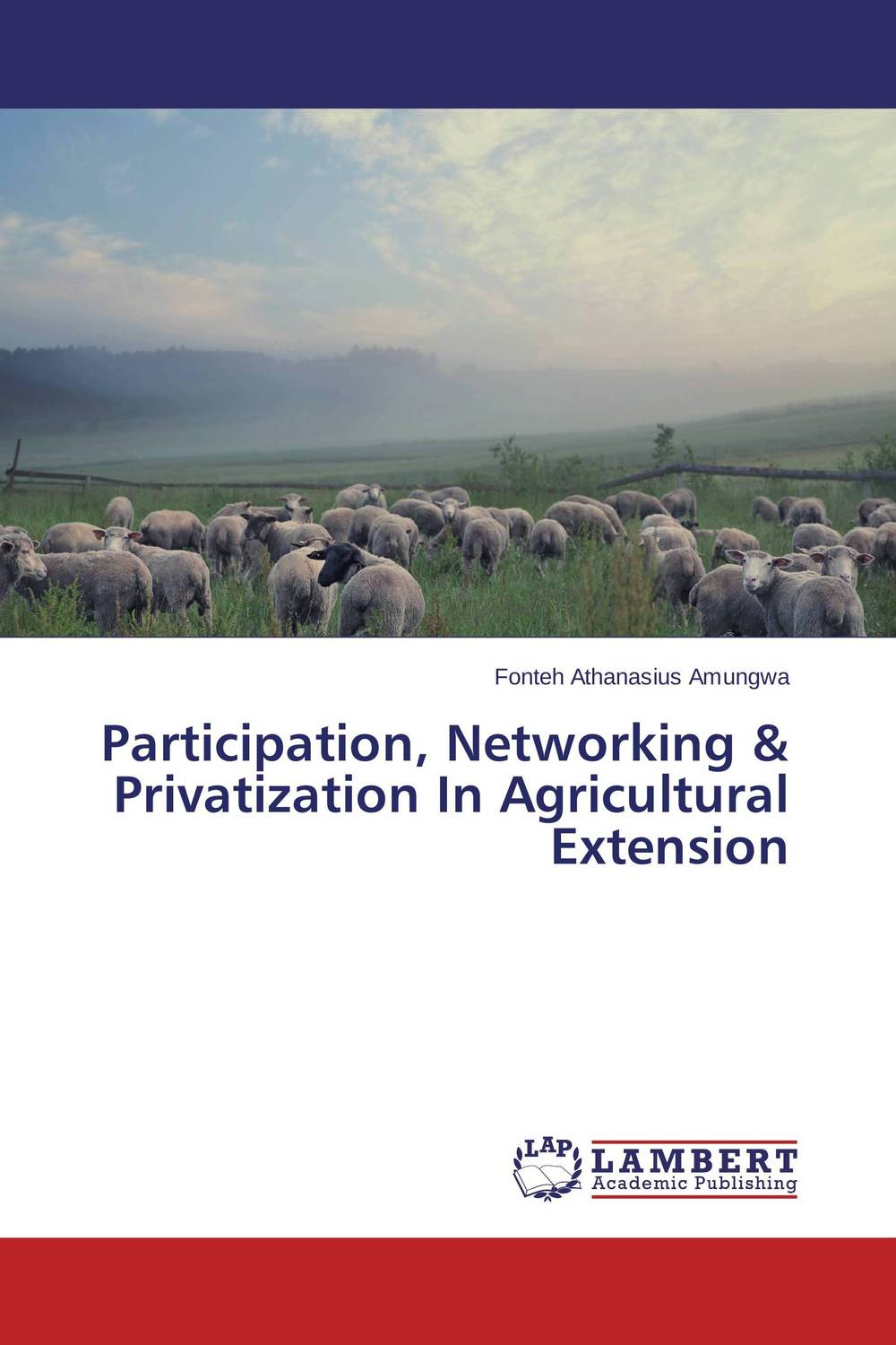 Participation, Networking & Privatization In Agricultural Extension crafting a more successful privatization policy
