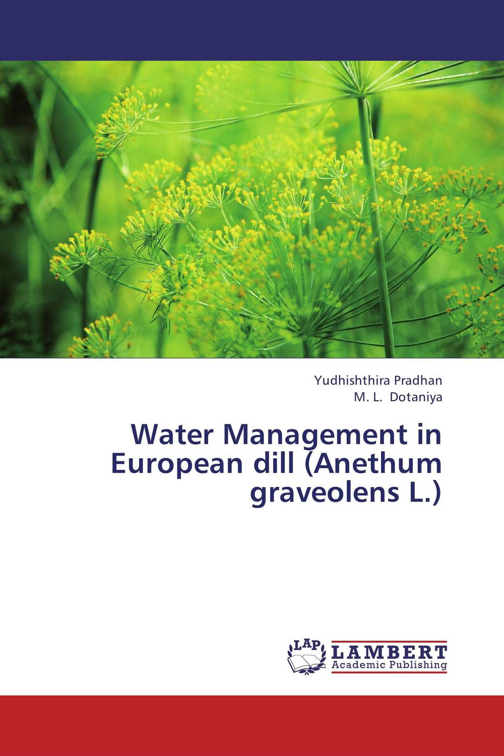 Water Management in European dill (Anethum graveolens L.) bride of the water god v 3
