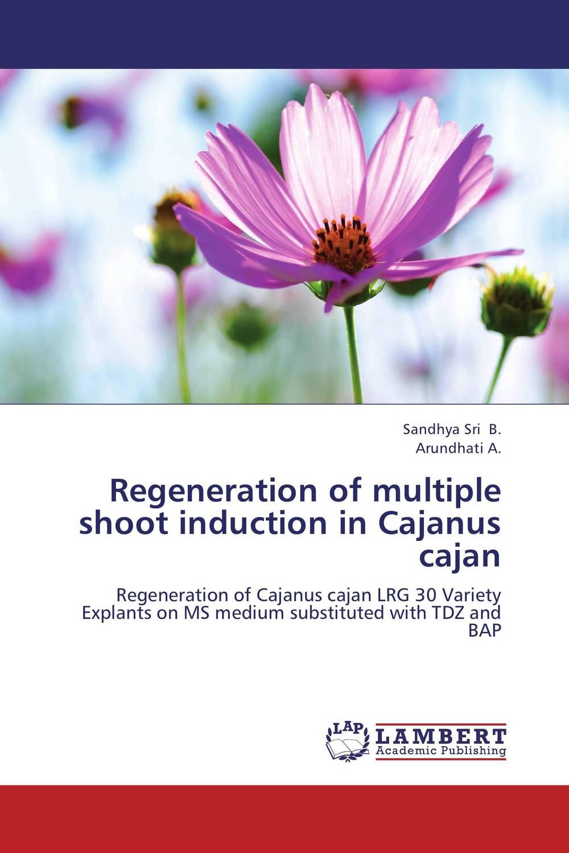 Regeneration of multiple shoot induction in Cajanus cajan sutapa dutta nagendra kumar singh and tapas kumar bandyopadhyay transcriptome sequencing in pigeonpea [cajanus cajan l millsp ]