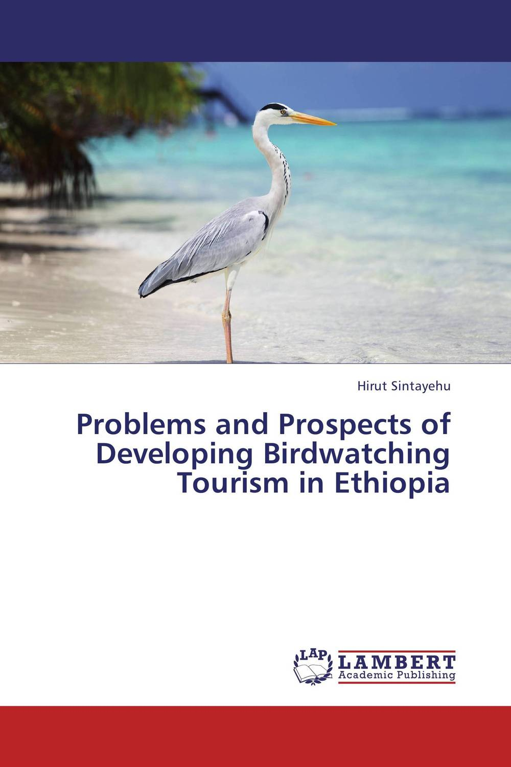 Problems and Prospects of Developing Birdwatching Tourism in Ethiopia problems and prospects of women entrepreneurs