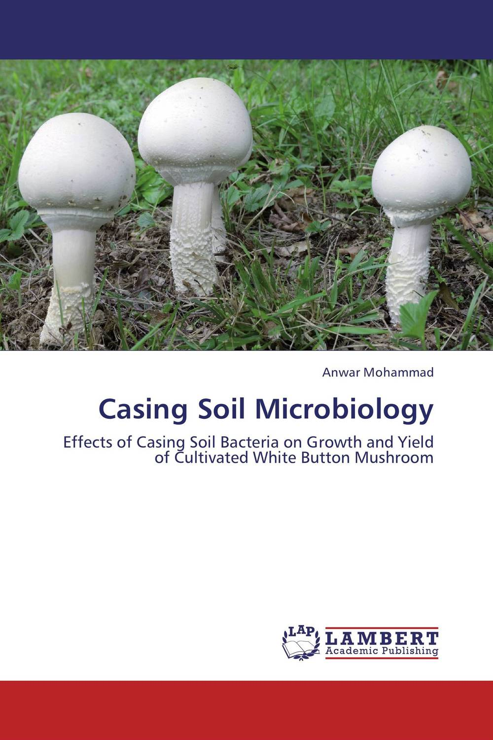 Casing Soil Microbiology soil microbiology ecology and biochemistry