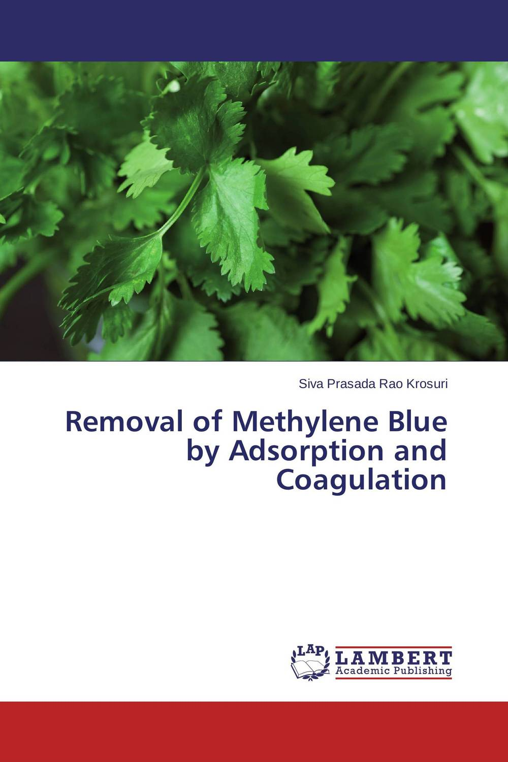 Removal of Methylene Blue by Adsorption and Coagulation