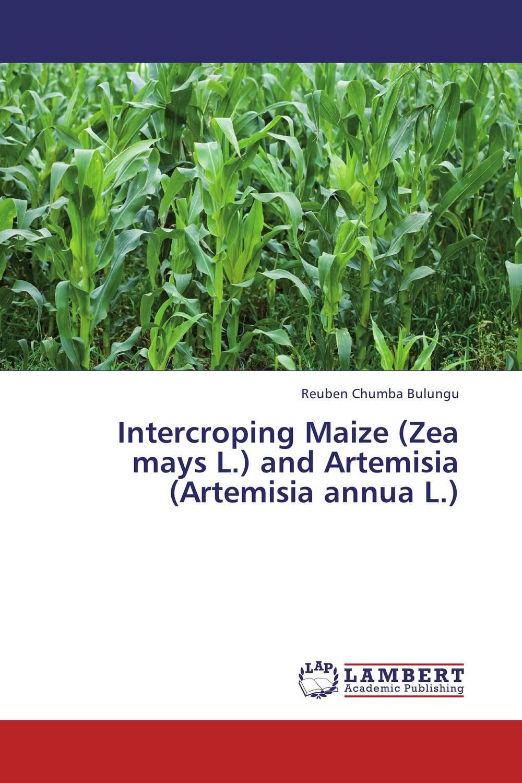 Intercroping Maize (Zea mays L.) and Artemisia (Artemisia annua L.) mantra встраиваемый светильник mantra cies c0081