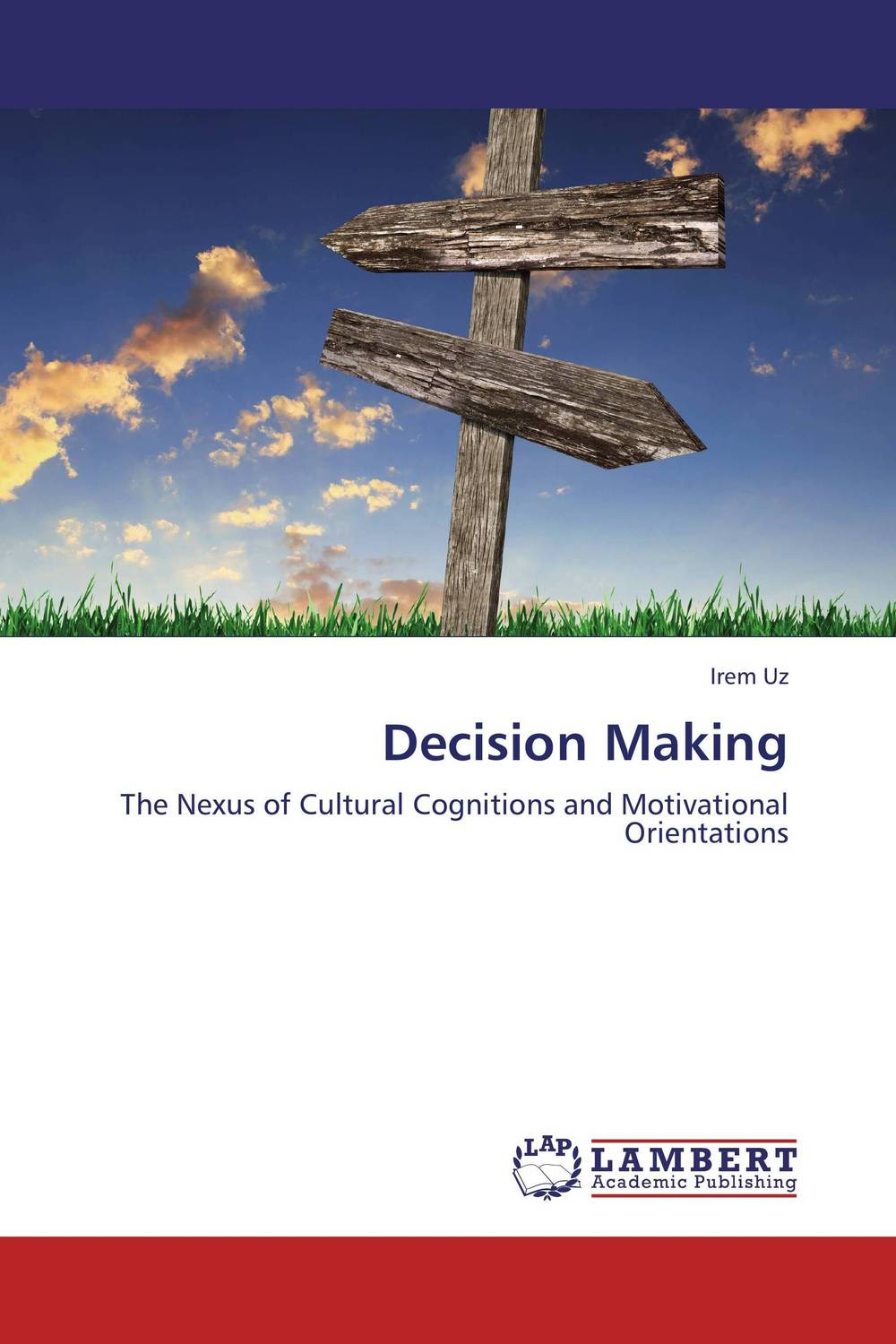 Decision Making info gap decision theory