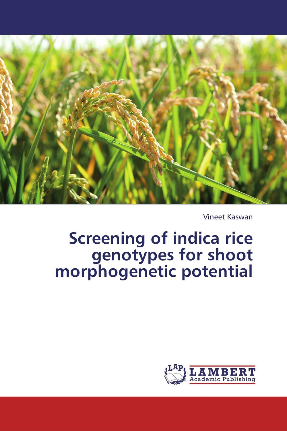 Screening of indica rice genotypes for shoot morphogenetic potential prostate screening motivating factors and barriers