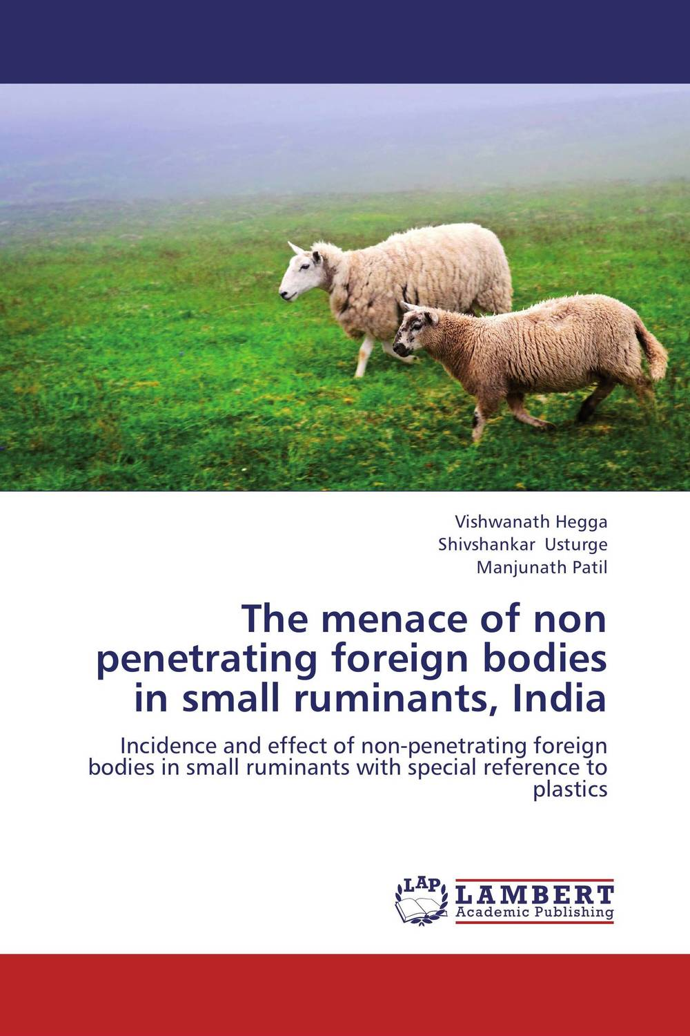 The menace of non penetrating foreign bodies in small ruminants, India lesions of skin of sheep and goats due to external parasites