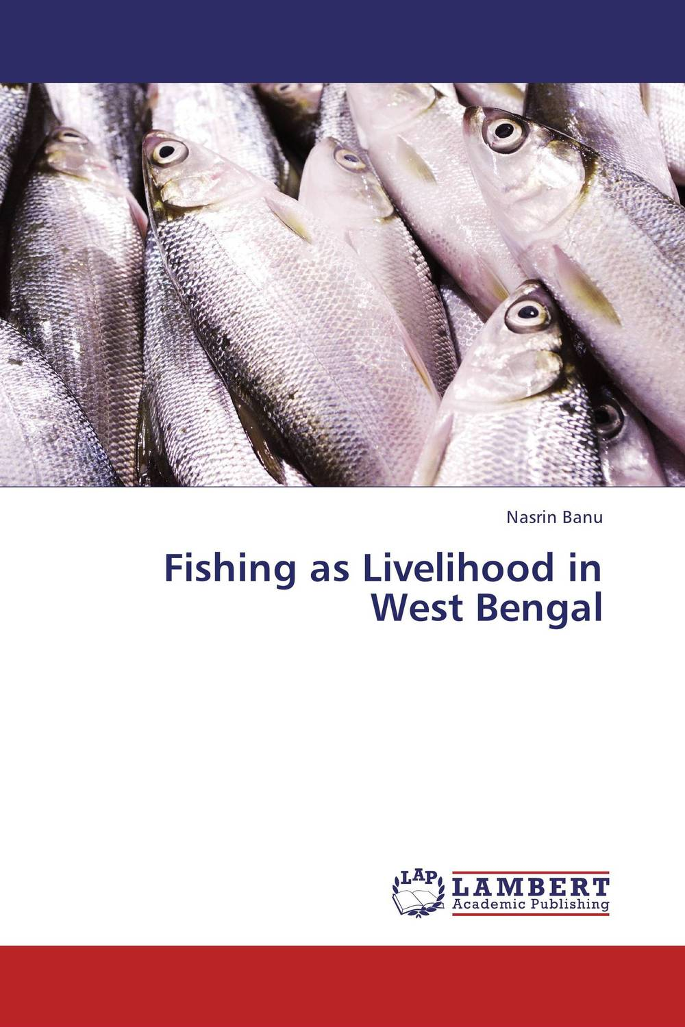 Fishing as Livelihood in West Bengal pris involvement in service delivery of mch care in west bengal