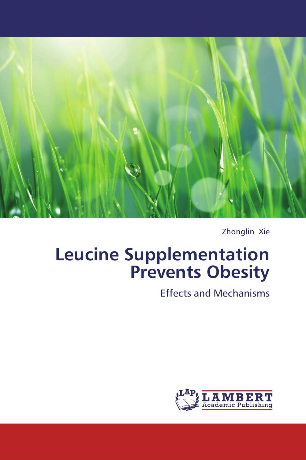 Leucine Supplementation Prevents Obesity transition period in cows nutrition metabolism and metabolic disease