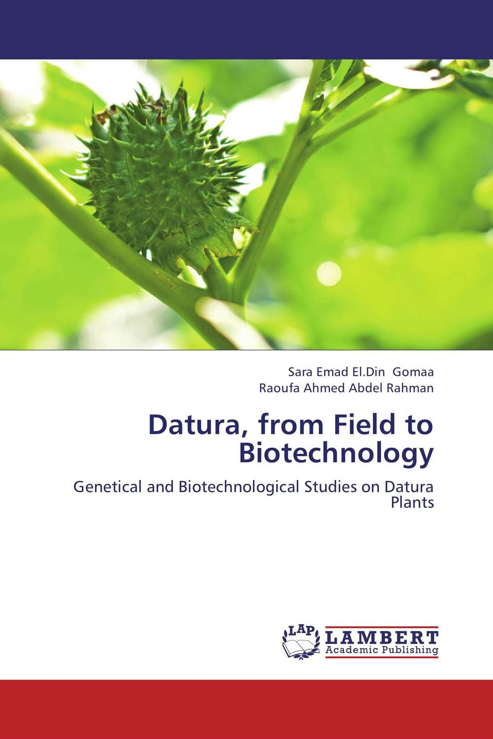 Datura, from Field to Biotechnology adding value to the citrus pulp by enzyme biotechnology production