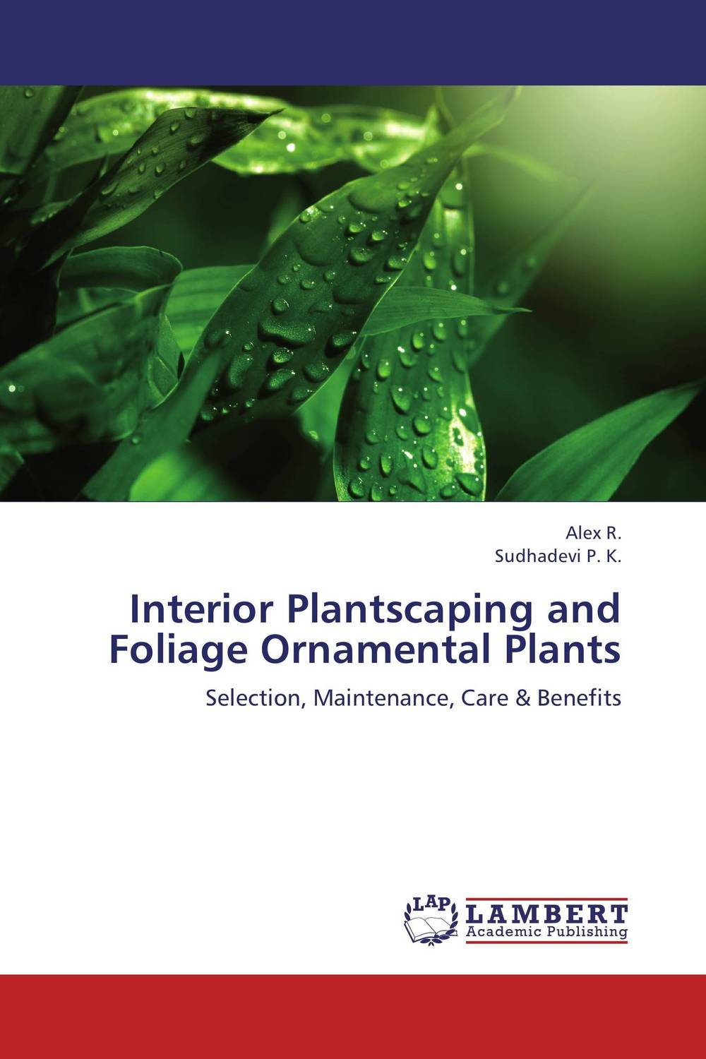 Interior Plantscaping and Foliage Ornamental Plants sourina mehryar division of interior spaces