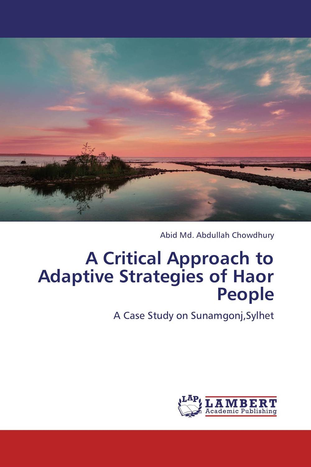 A Critical Approach to Adaptive Strategies of Haor People david swanson the data driven leader a powerful approach to delivering measurable business impact through people analytics