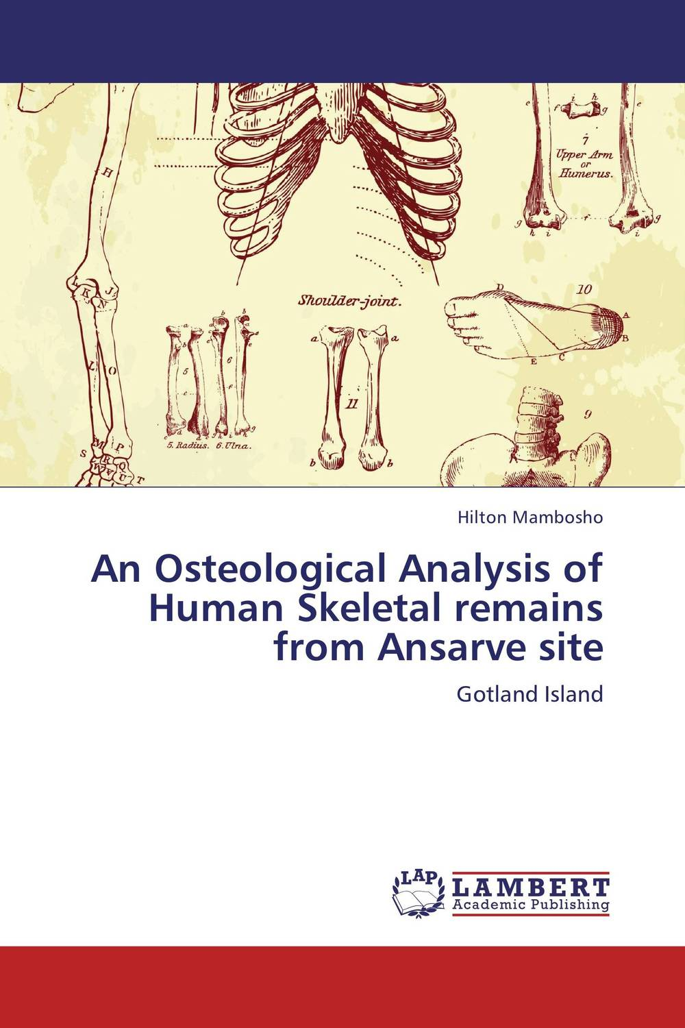 An Osteological Analysis of Human Skeletal remains from Ansarve site stanley j olsen fish amphibian and reptile remains from archaeological sites pt1 – southeastern and southwestern us appendix–osteology of wild turkey
