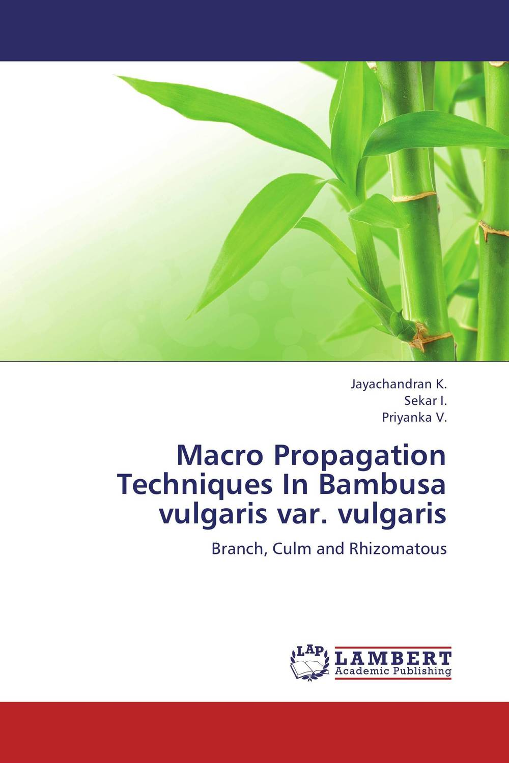 Macro Propagation Techniques In Bambusa vulgaris var. vulgaris adding value to the citrus pulp by enzyme biotechnology production
