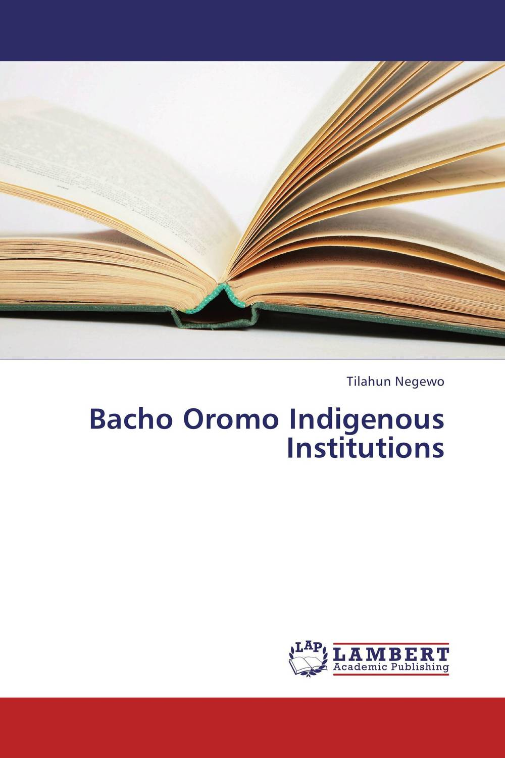 Bacho Oromo Indigenous Institutions african indigenous institutions for conflict resolution