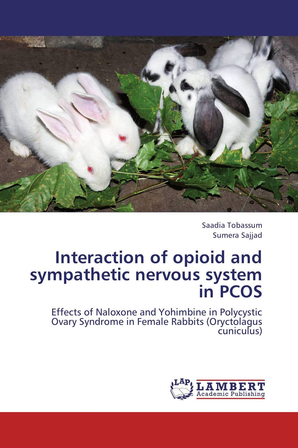 Interaction of opioid and sympathetic nervous system in PCOS nervous system model anatomical models of the nervous system model of the human nervous system