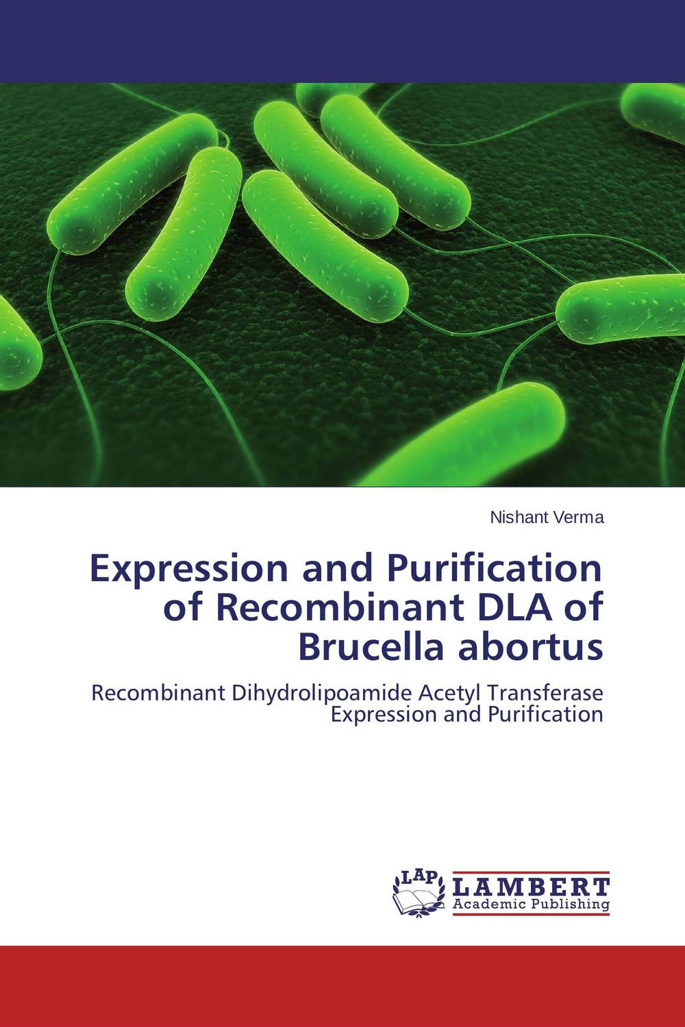Expression and Purification of Recombinant DLA of Brucella abortus therapeutic management of infertility in cattle