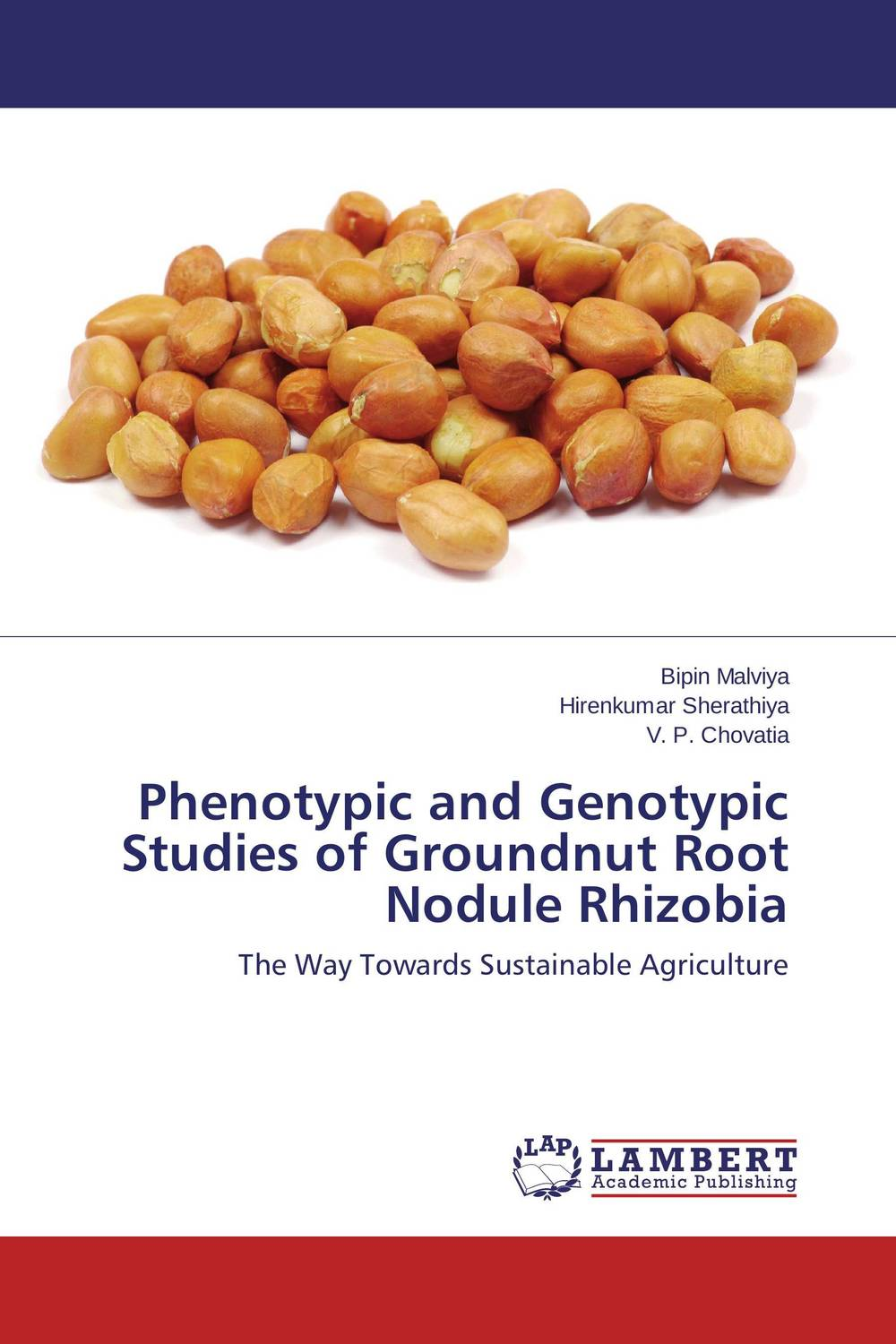 Phenotypic and Genotypic Studies of Groundnut Root Nodule Rhizobia the teeth with root canal students to practice root canal preparation and filling actually