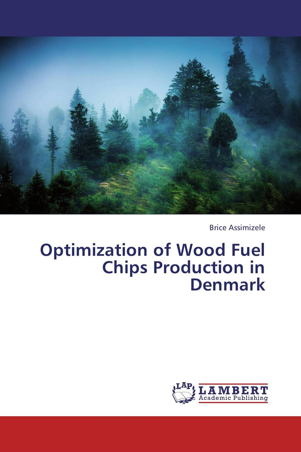 Optimization of Wood Fuel Chips Production in Denmark a decision support tool for library book inventory management