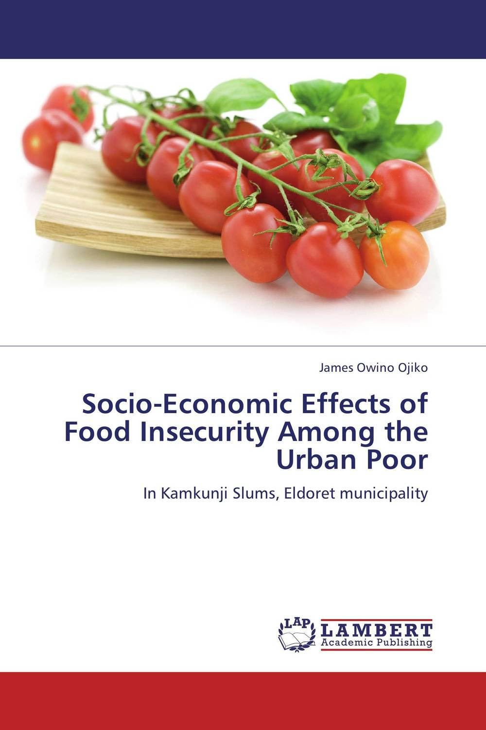 Socio-Economic Effects of Food Insecurity Among the Urban Poor reuben okereke socio economic impact of a university campus development project