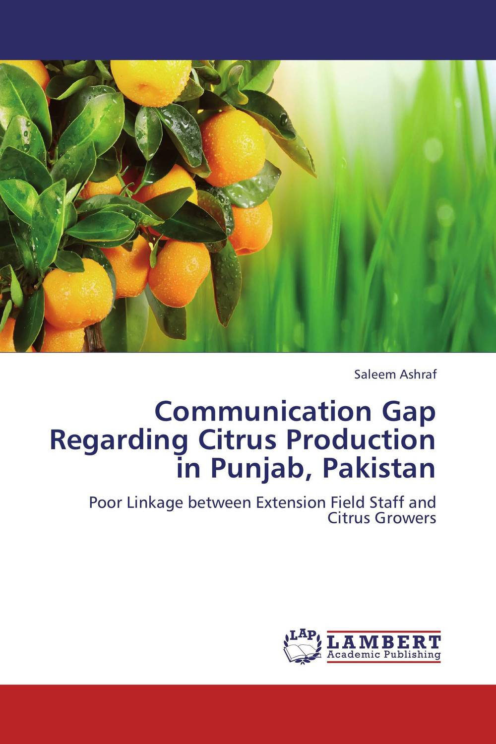 Communication Gap Regarding Citrus Production in Punjab, Pakistan комплект боди 3 шт gap gap ga020eksyb47