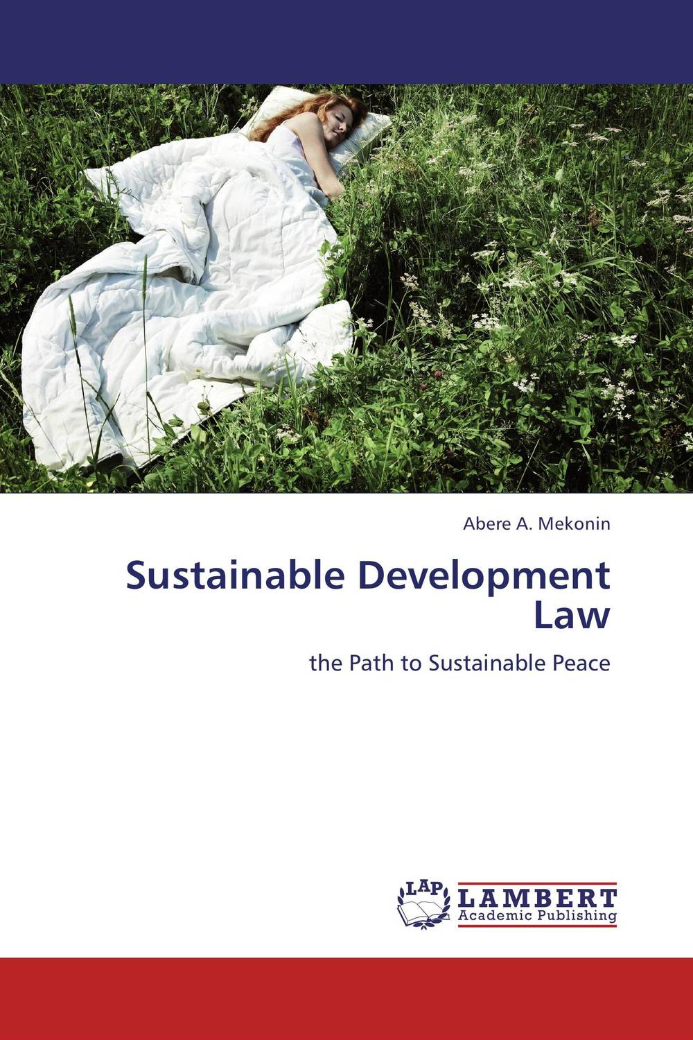 Sustainable Development Law linguistic diversity and social justice