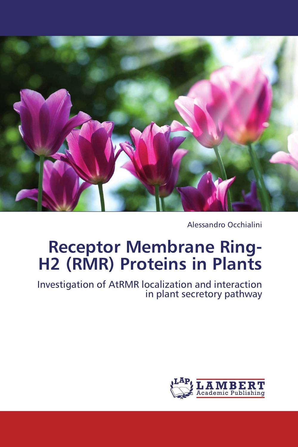 Receptor Membrane Ring-H2 (RMR) Proteins in Plants receptor membrane ring h2 rmr proteins in plants