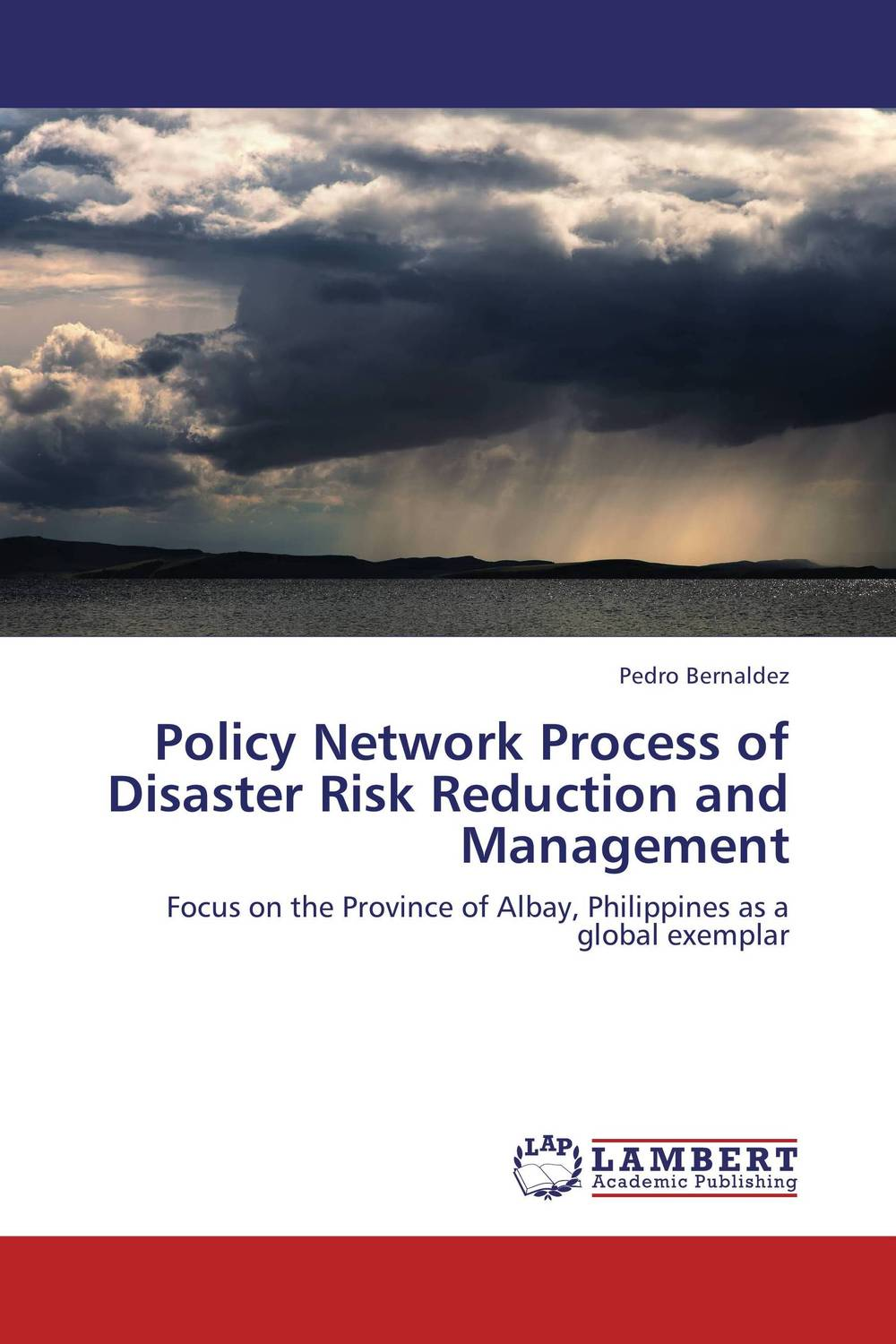 где купить  Policy Network Process of Disaster Risk Reduction and Management  по лучшей цене