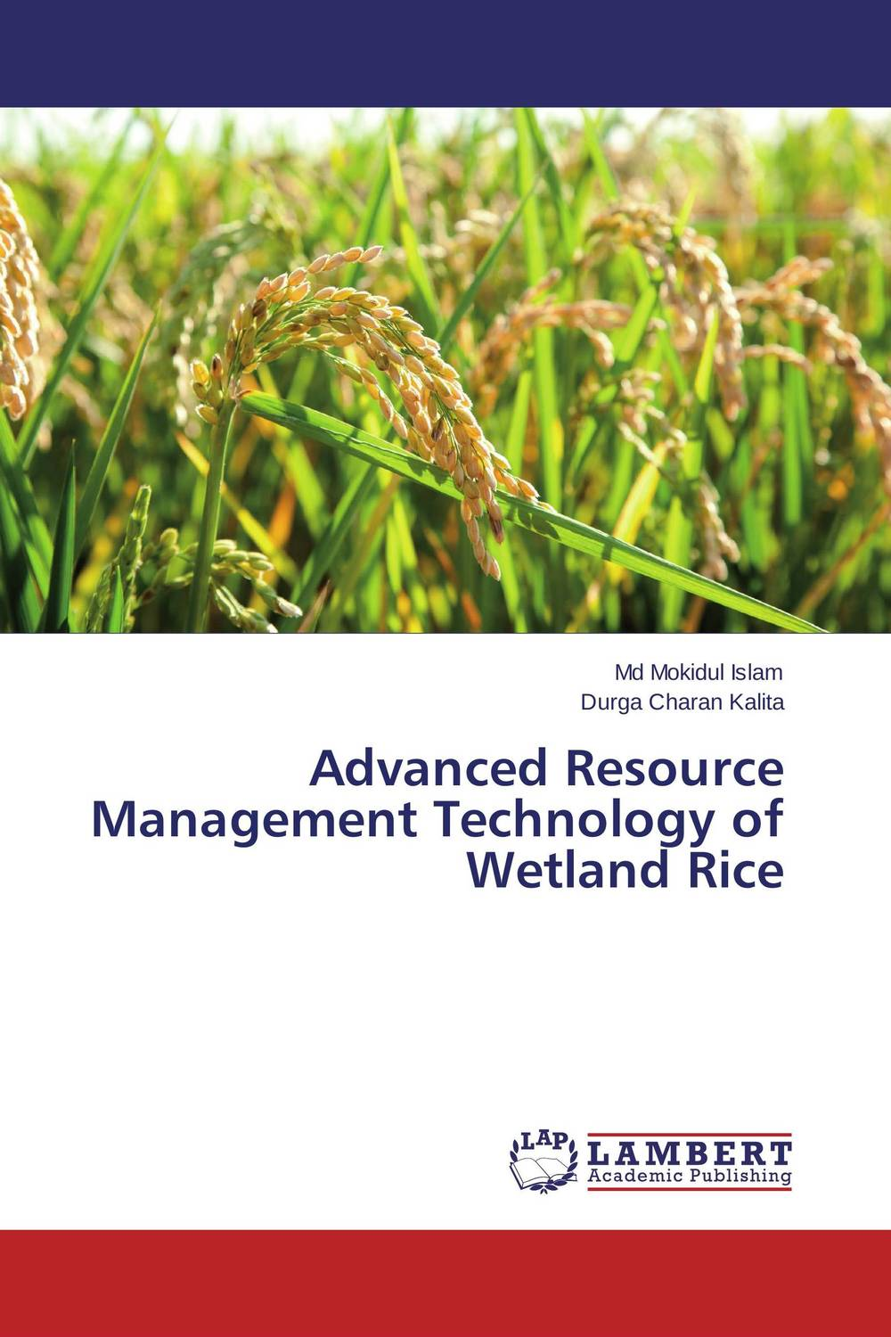 Advanced Resource Management Technology of Wetland Rice natural enemy fauna in rice wheat system of india