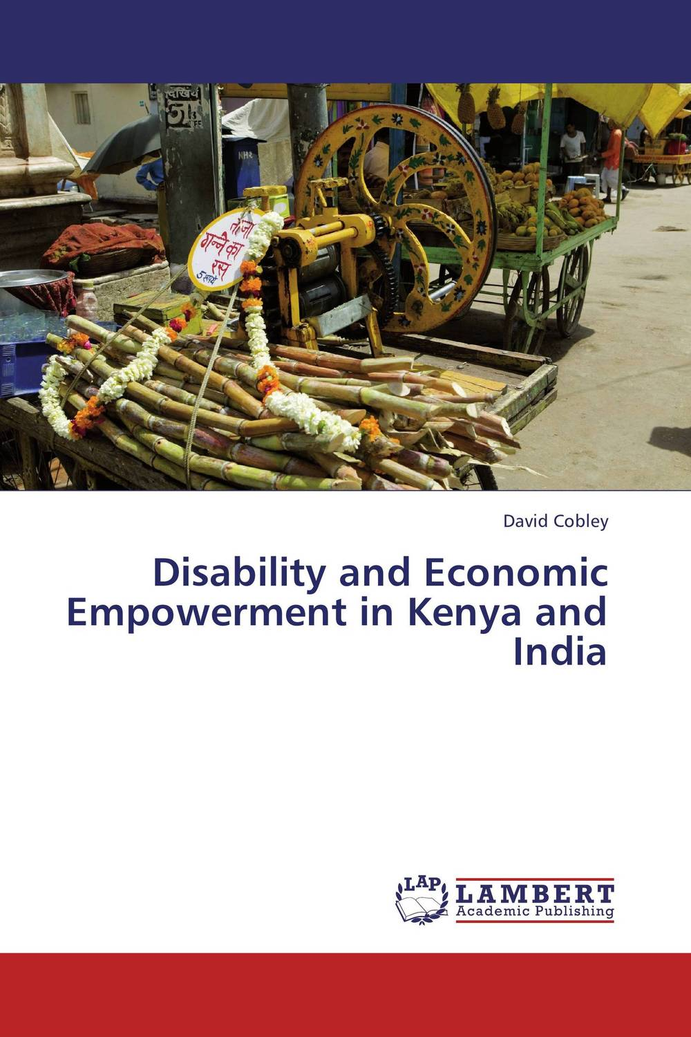 Disability and Economic Empowerment in Kenya and India renu addlakha contemporary perspectives on disability in india