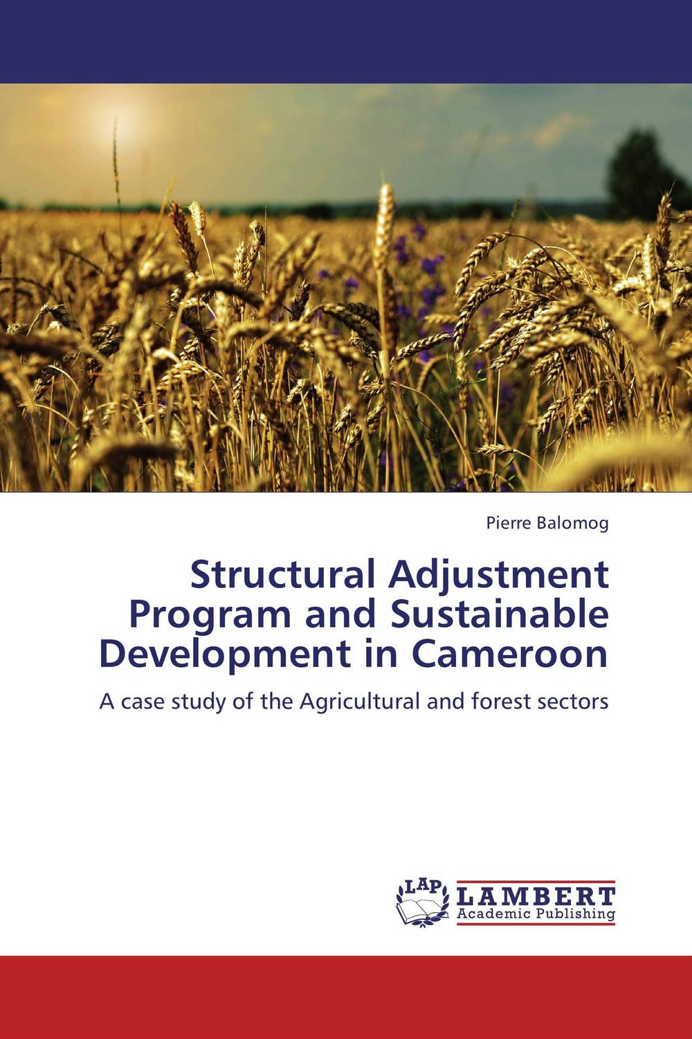 Structural Adjustment Program and Sustainable Development in Cameroon an incremental graft parsing based program development environment