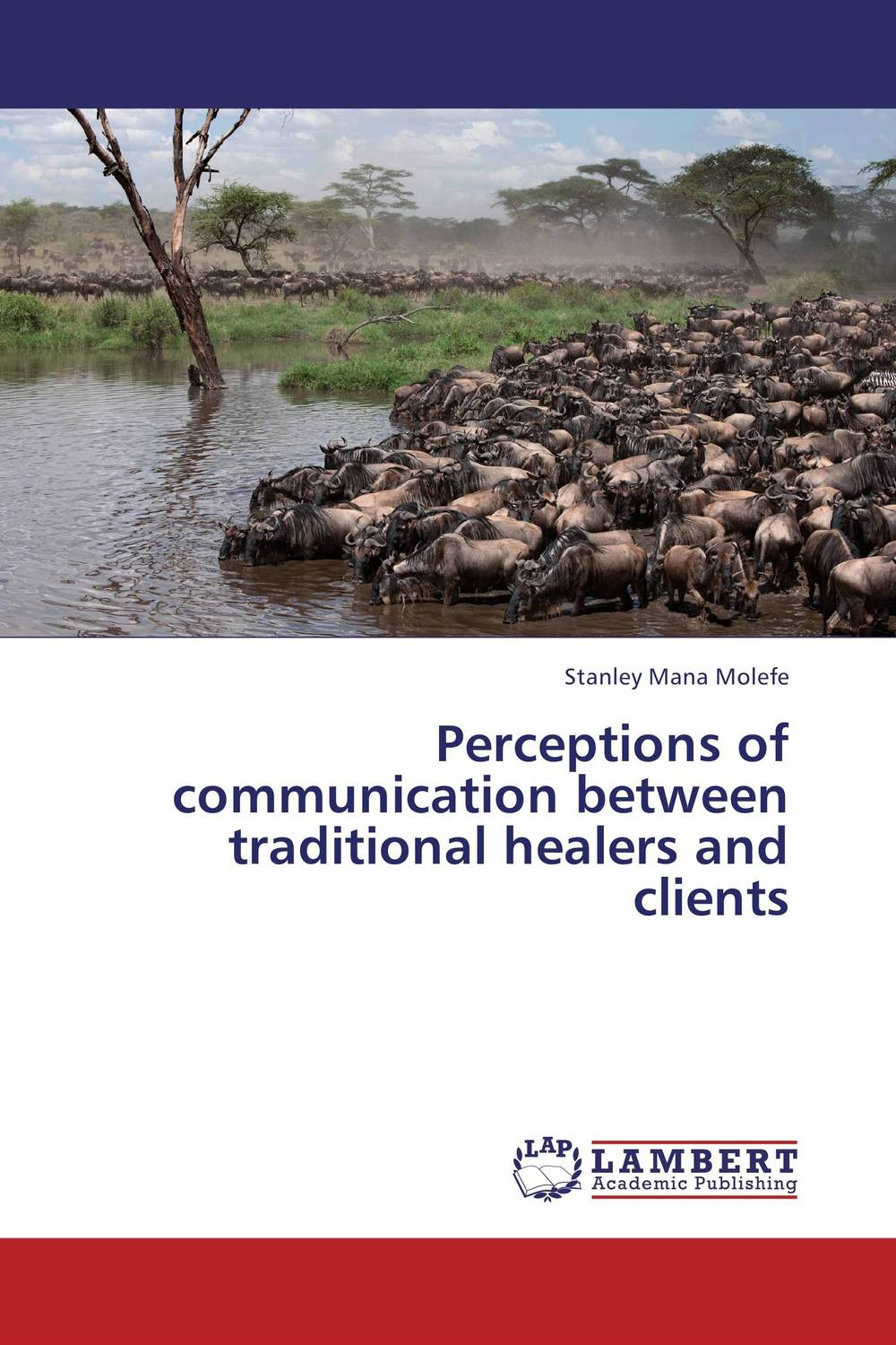Perceptions of communication between traditional healers and clients comparison between sdp in cloud paas and traditional hosting platform