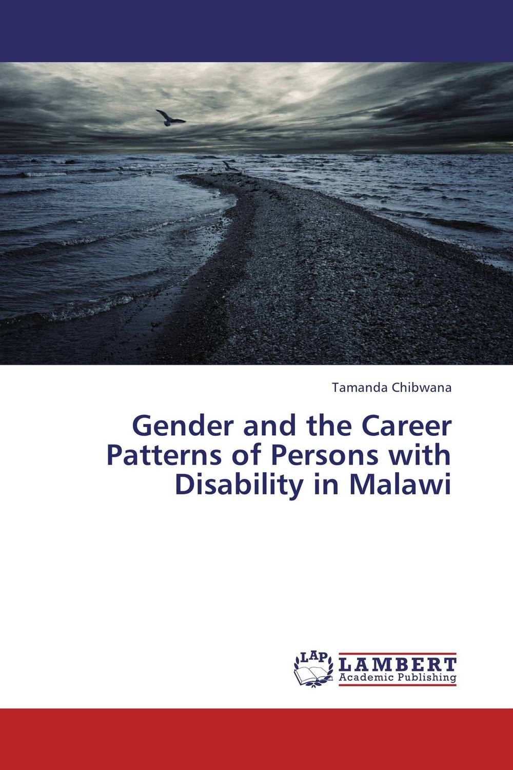 Gender and the Career Patterns of Persons with Disability in Malawi agus immanuel a study on career choice