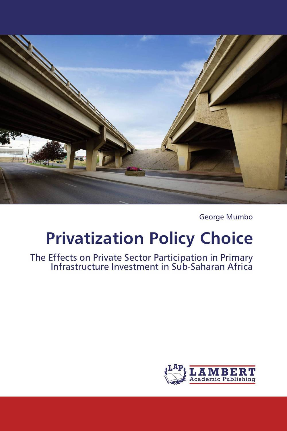 Privatization Policy Choice crafting a more successful privatization policy
