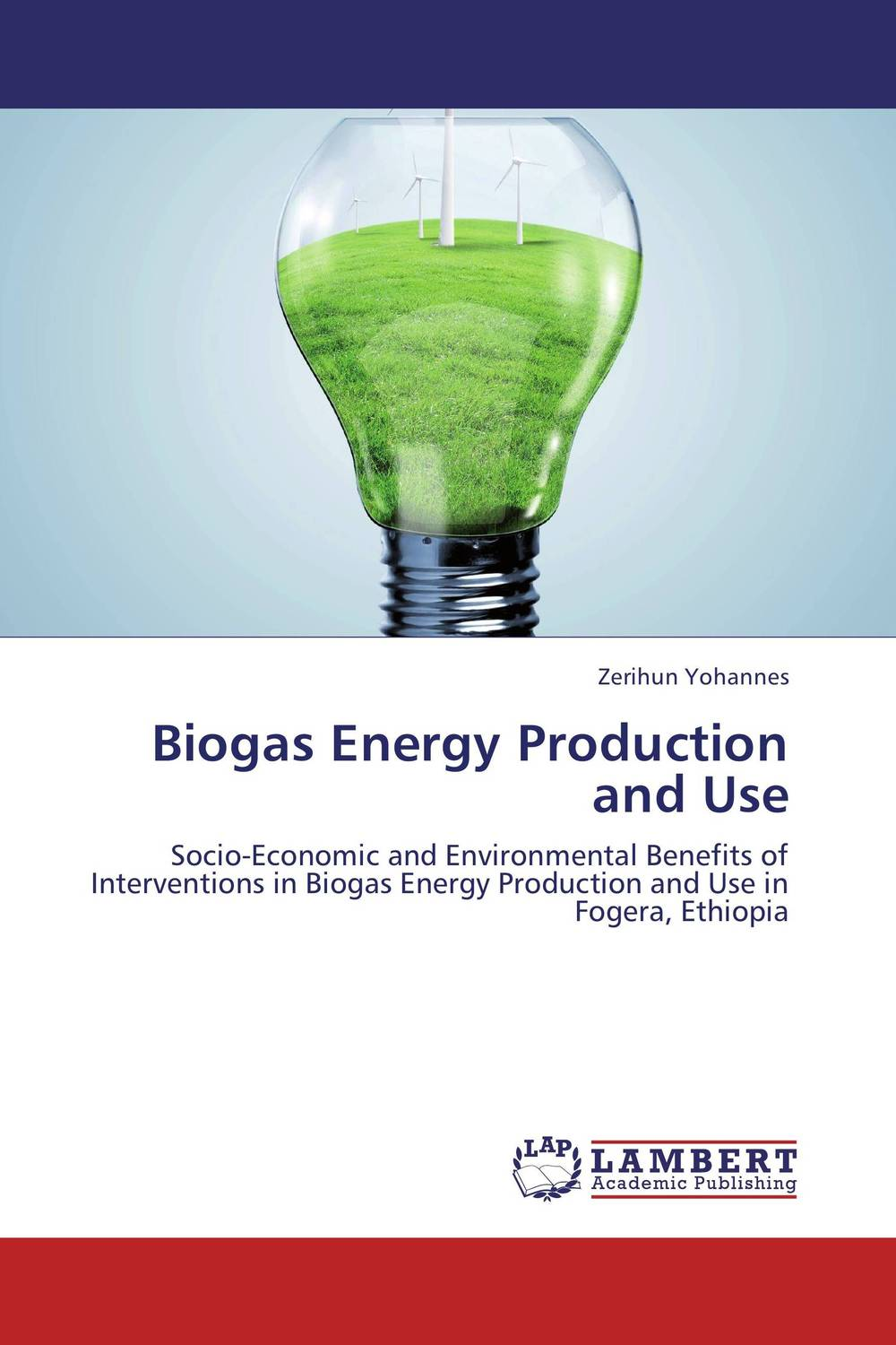 Biogas Energy Production and Use assessing the economic aspects of biogas plants