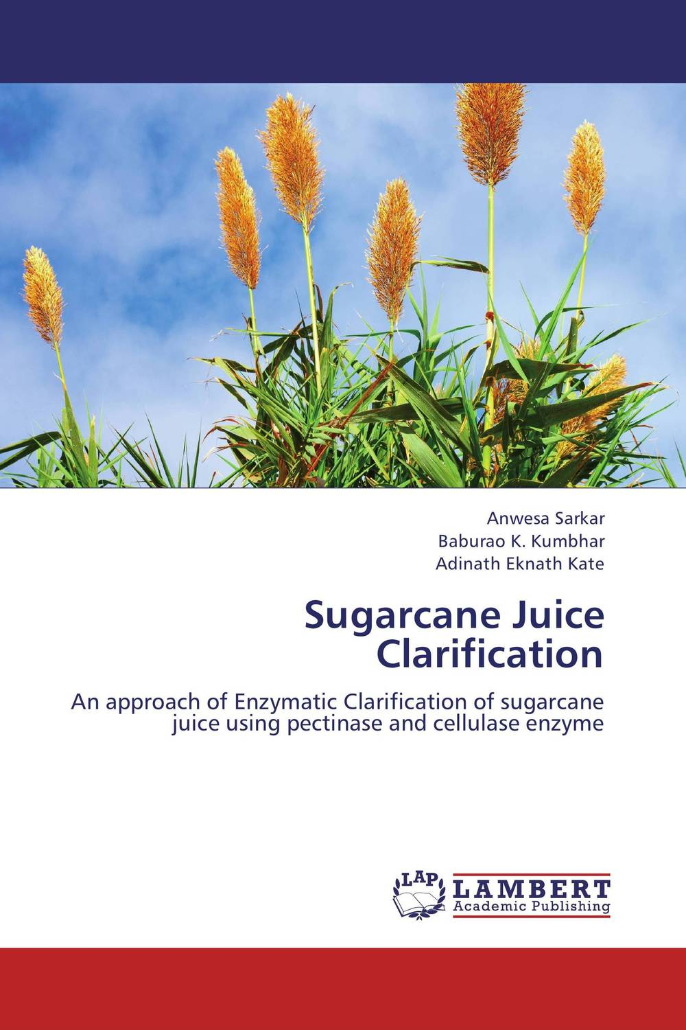 Sugarcane Juice Clarification enzymatic processing of clear fruit juices the case of pineapple