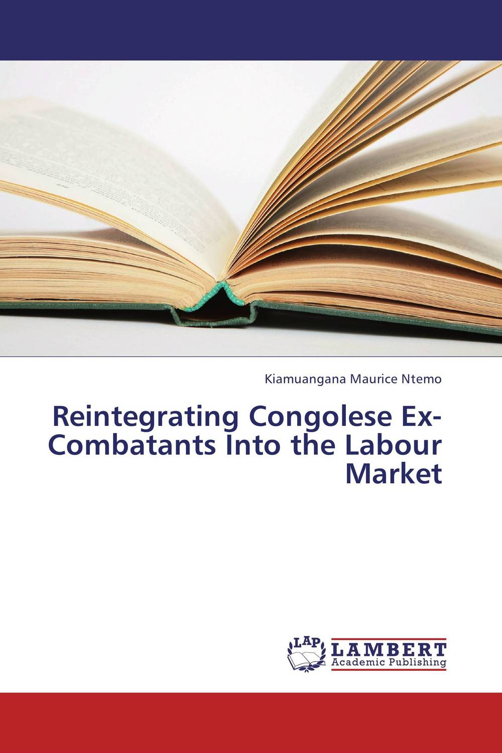 Reintegrating Congolese Ex-Combatants Into the Labour Market the convoy tour 25 years of the ex