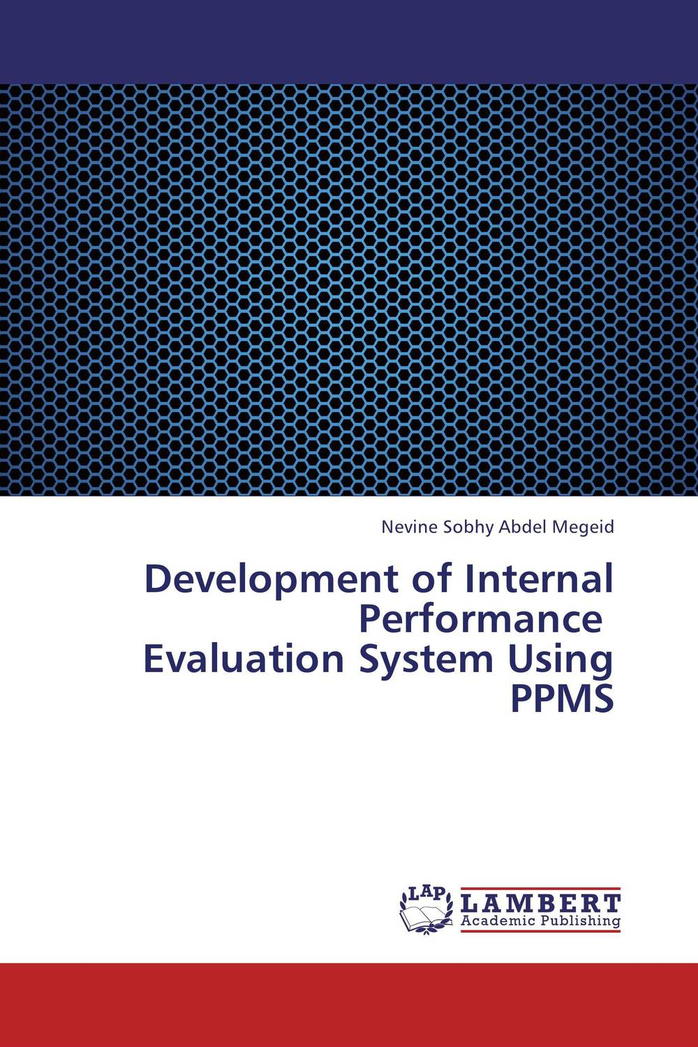 Development of Internal Performance   Evaluation System Using PPMS david parmenter key performance indicators developing implementing and using winning kpis
