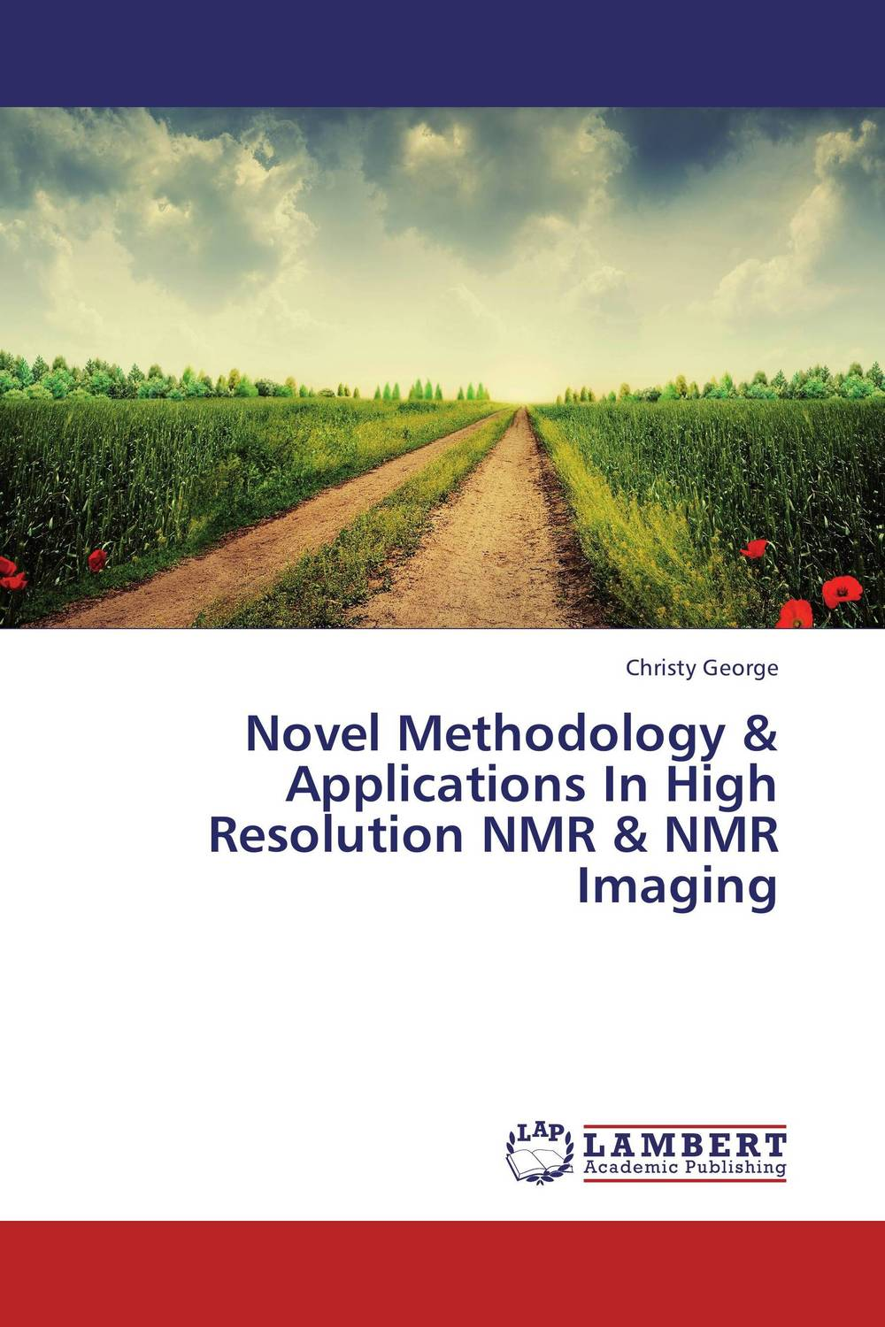 Novel Methodology & Applications In High Resolution NMR & NMR Imaging alon dadon imaging spectroscopy from space applied for geological mapping