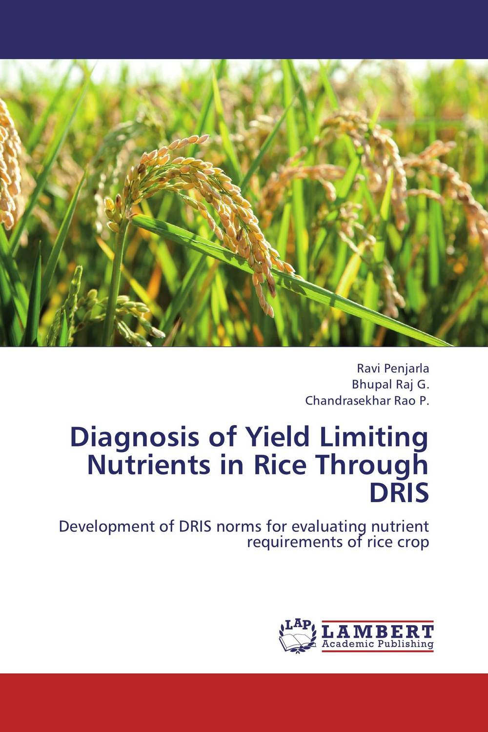 Diagnosis of Yield Limiting Nutrients in Rice Through DRIS franke bibliotheca cardiologica ballistocardiogra phy research and computer diagnosis