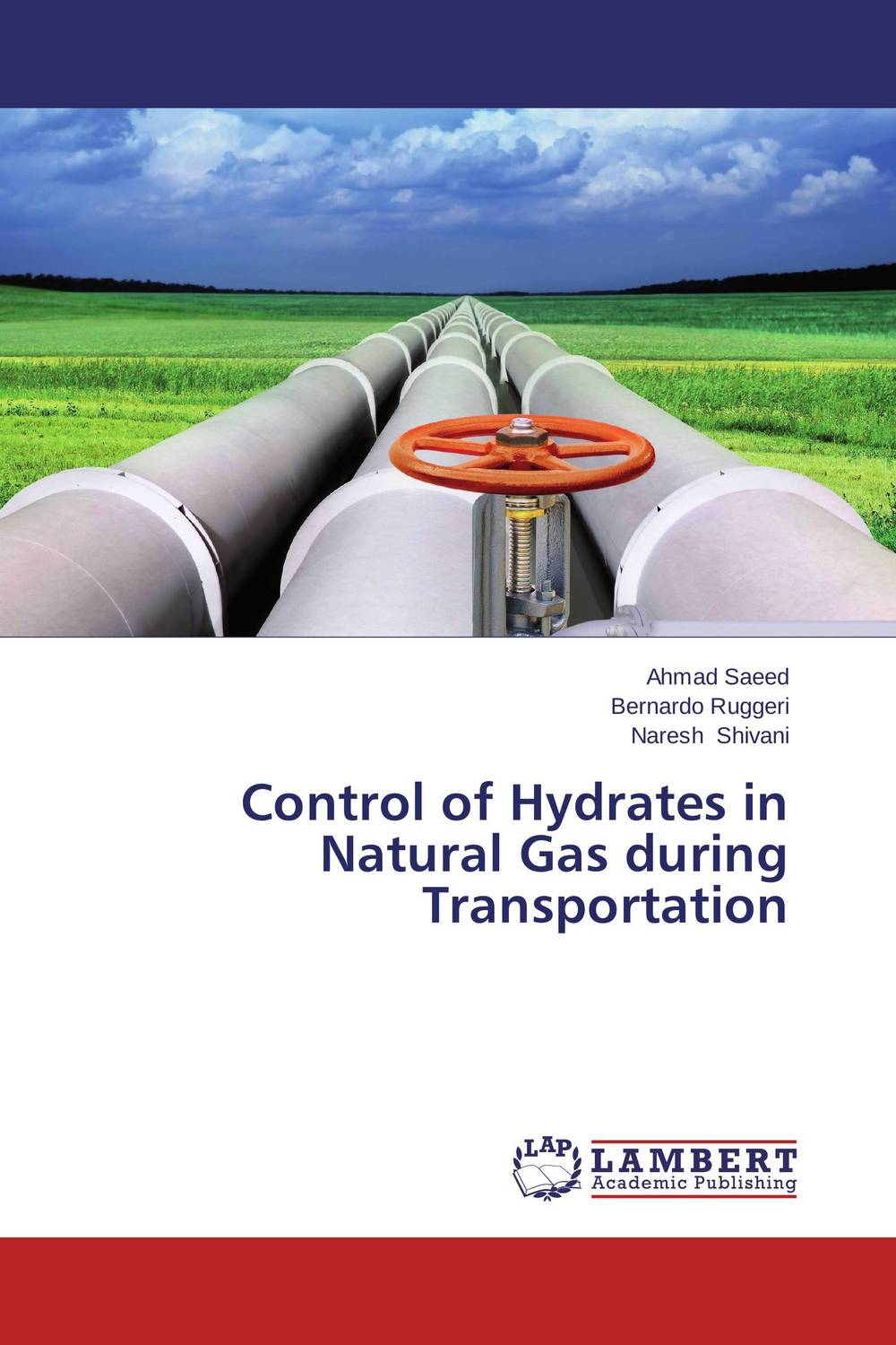 Control of Hydrates in Natural Gas during Transportation multiobjective optimization of natural gas transportation networks